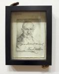 Frank Waters. 2013. Graphite, paper, magicicada, magicicada exuvia. 9 x 6 in.