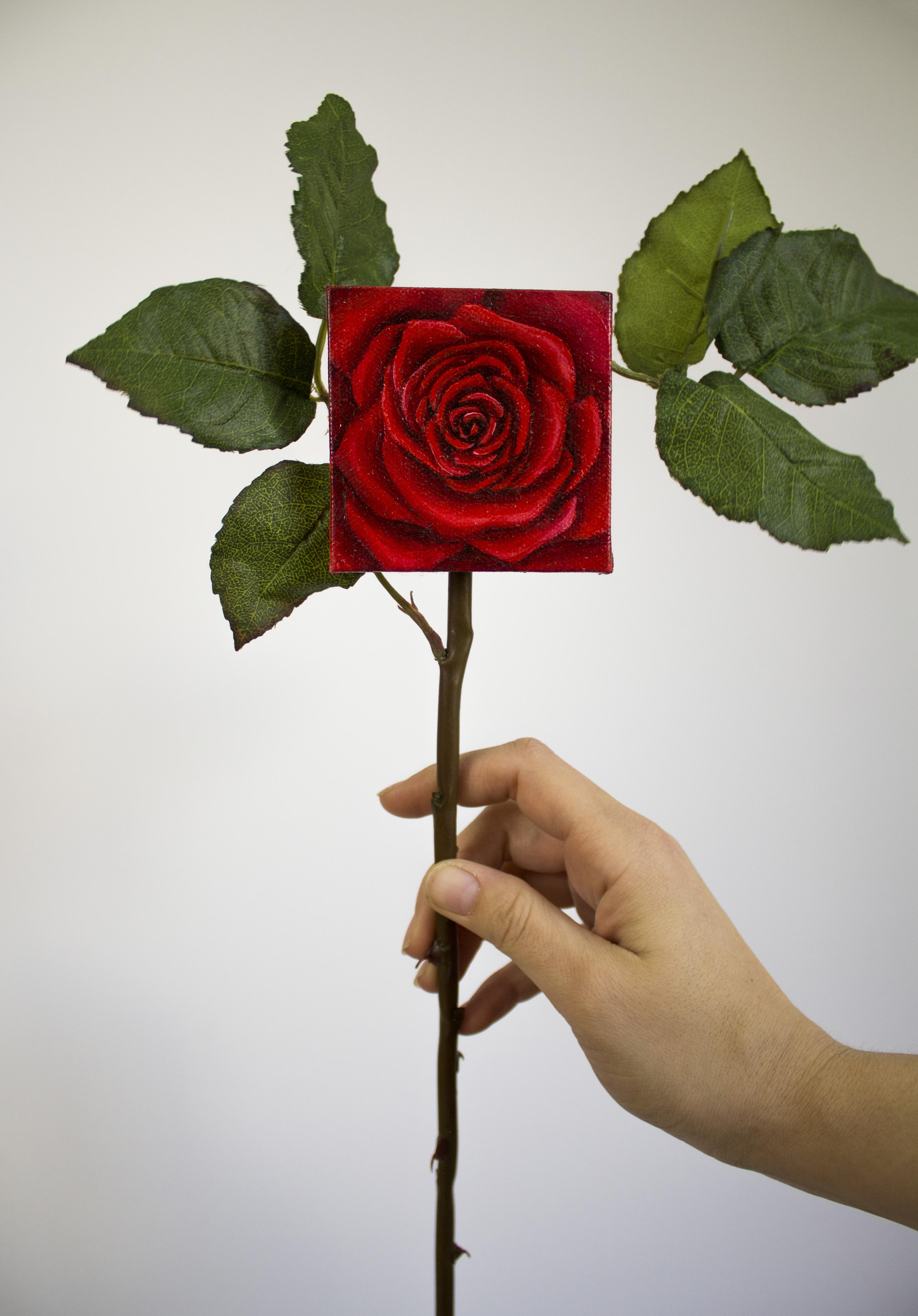 Forever Rose (Red) : $40 - $55